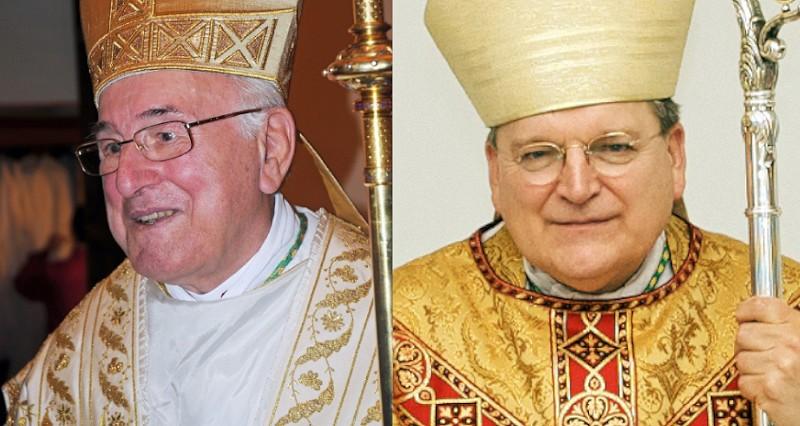 Römisch-katholische Kirche - Kardinäle warnen vor 'Pest der homosexuellen Agenda'